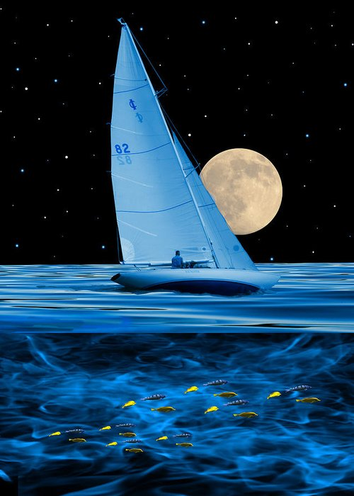 Boat Greeting Card featuring the photograph 2777 by Peter Holme III