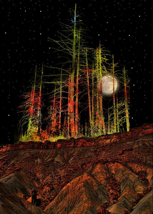 Trees Greeting Card featuring the photograph 2806 by Peter Holme III