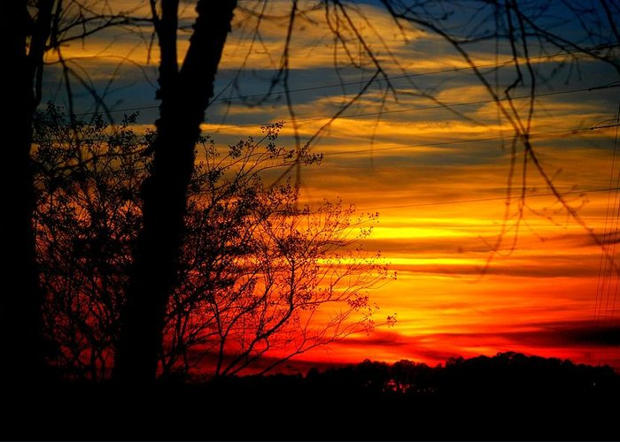 Sunset Greeting Card featuring the photograph Sunset by William Copeland