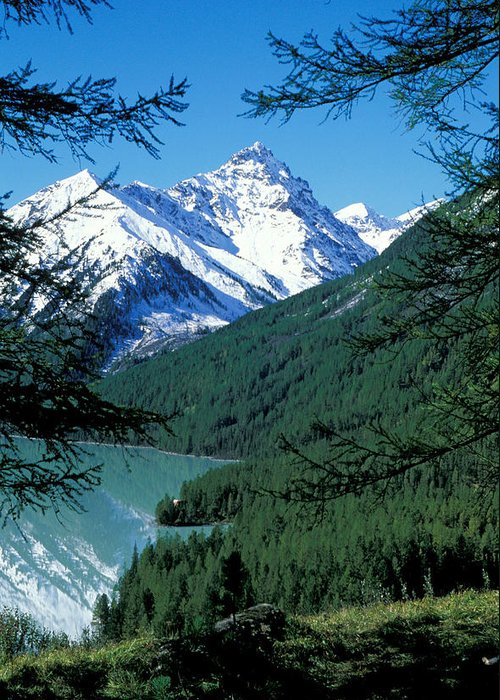 Forestland; Hills & Mountains; Lake; Landscape; Nature; Nobody; Outdoors; Outside; Scenery; Scenic; Scenics; Snow; Trees; Water; Woodland Greeting Card featuring the photograph Altai Mountains by Anonymous
