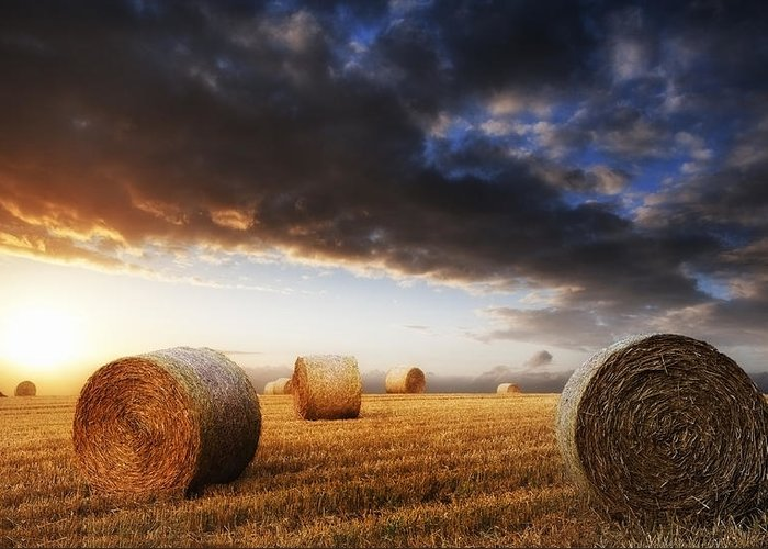Landscape Greeting Card featuring the photograph Beautiful Golden Hour Hay Bales Sunset Landscape by Matthew Gibson