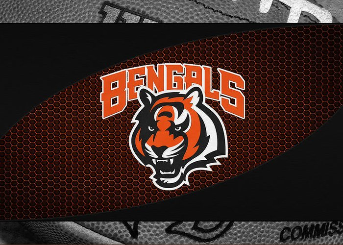 Bengals Greeting Card featuring the photograph Cincinnati Bengals by Joe Hamilton