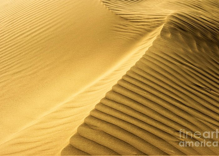 Dunes Greeting Card featuring the photograph Desert Sand Dune by Ezra Zahor