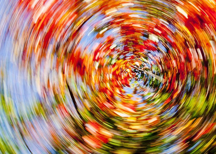 Autumn Greeting Card featuring the photograph Fall Abstract by Steven Ralser