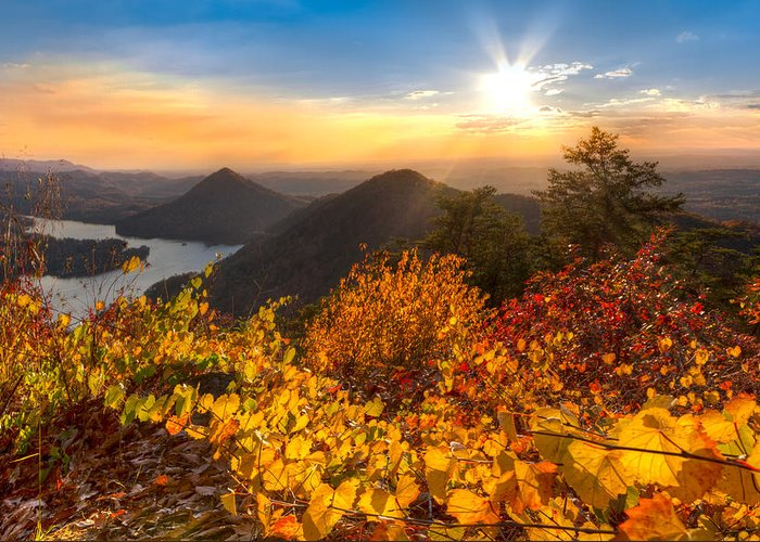 Appalachia Greeting Card featuring the photograph Golden Hour by Debra and Dave Vanderlaan