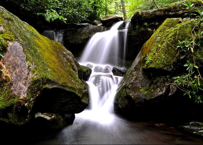 Smoky Mountains Greeting Card featuring the photograph Grotto Falls by Frozen in Time Fine Art Photography