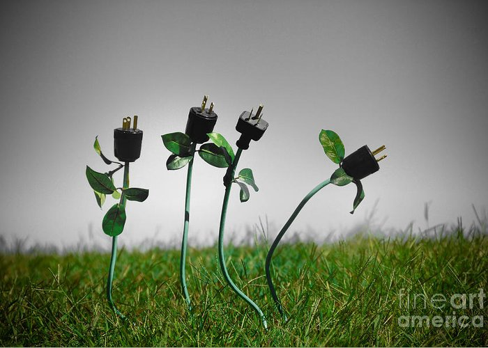 Alternative Energy Greeting Card featuring the photograph Growing Green Energy by Amy Cicconi