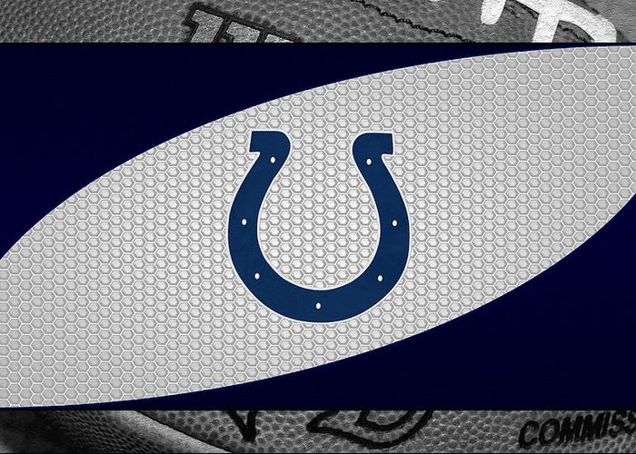 Colts Greeting Card featuring the photograph Indianapolis Colts by Joe Hamilton