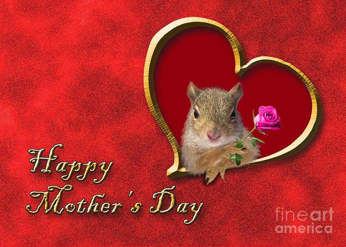 Holiday Greeting Card featuring the photograph Mother's Day Squirrel by Jeanette K