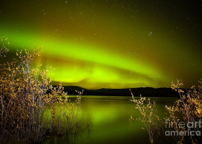 Above Greeting Card featuring the photograph Northern Lights Mirrored On Lake by Stephan Pietzko