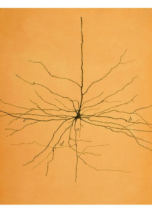 Neuron Greeting Cards