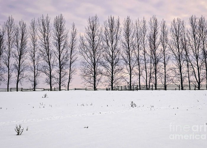 Landscape Greeting Card featuring the photograph Rural Winter Landscape by Elena Elisseeva