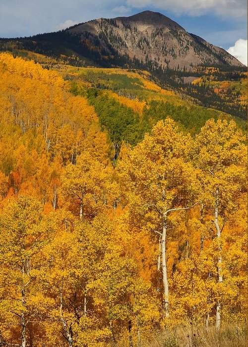 San Greeting Card featuring the photograph San Juan Mountains In Autumn by Jetson Nguyen