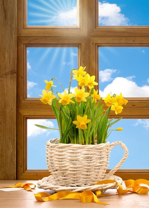 Spring Greeting Card featuring the photograph Spring Window by Amanda Elwell