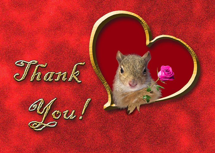 Thank You Greeting Card featuring the photograph Thank You Squirrel by Jeanette K
