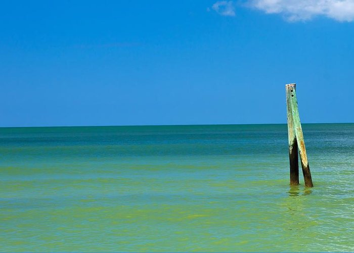 Atlantic Greeting Card featuring the photograph Boca Grande Florida by Fizzy Image