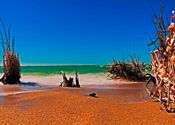 Tropical Beach Panorama Greeting Card featuring the photograph 4x1 Florida Beach Panorama 732 by Rolf Bertram