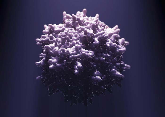 Aav Greeting Card featuring the photograph Adeno-associated Virus by Science Picture Co