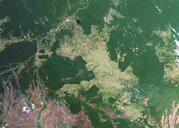 Forest Greeting Card featuring the photograph Deforestation In The Amazon by Nasa Earth Observatory