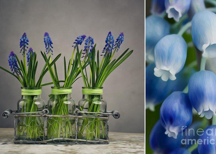 Glass Vase Digital Art Greeting Cards