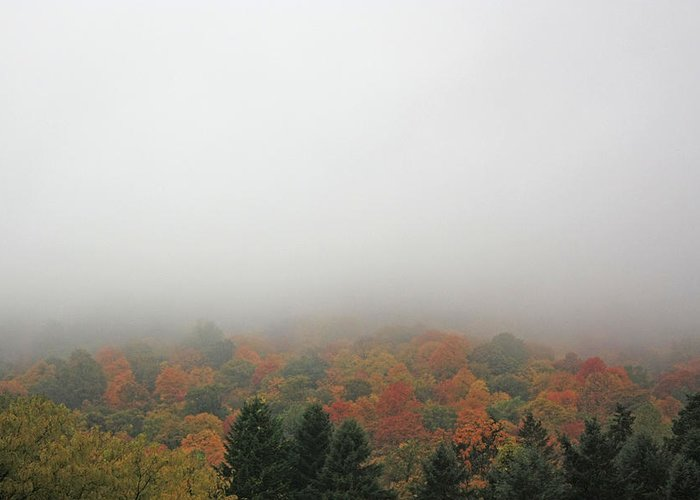 Autumn Foilage Greeting Card featuring the photograph A Foggy Autumn Day At The United States Military Academy by James Connor