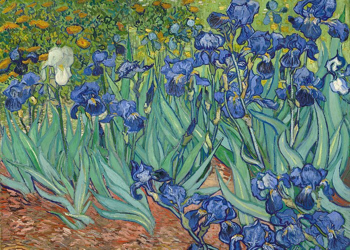 Iris Greeting Card featuring the painting Irises by Vincent van Gogh