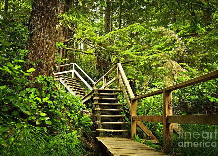 Wooden Stairs Greeting Cards