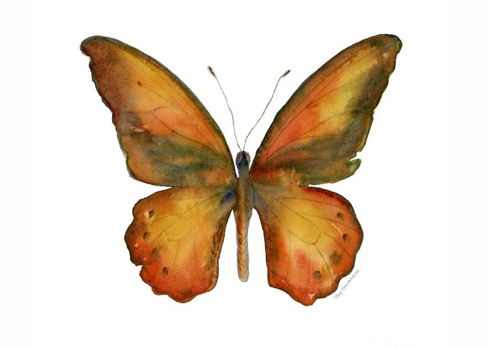 Orange And Brown Wings Greeting Cards