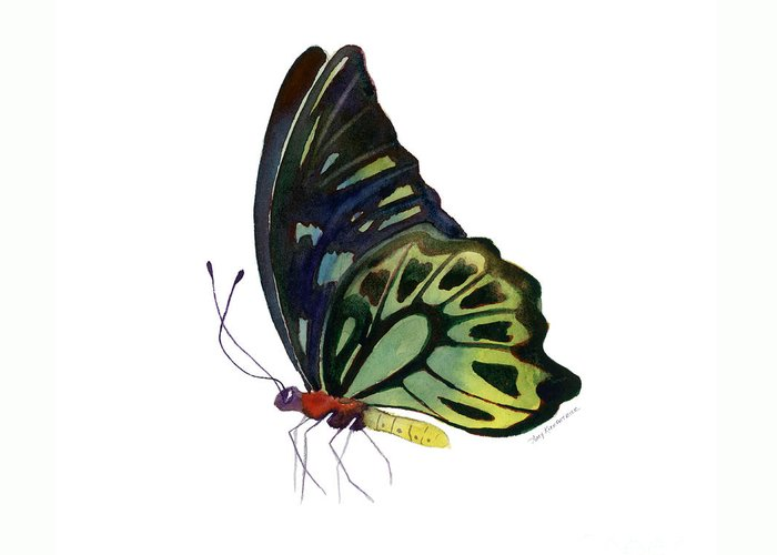 Kuranda Butterfly Greeting Card featuring the painting 97 Perched Kuranda Butterfly by Amy Kirkpatrick