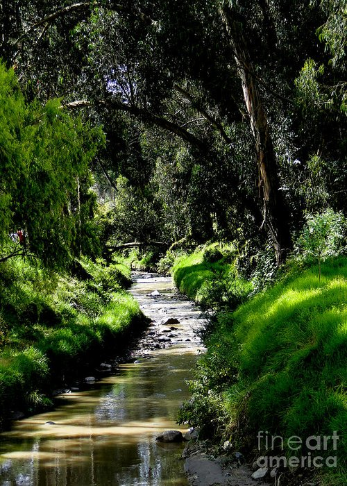 Al Bourassa Greeting Card featuring the photograph A Babbling Brook by Al Bourassa