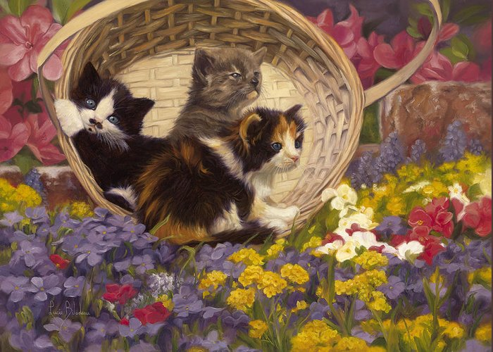 Calico Cats Greeting Cards