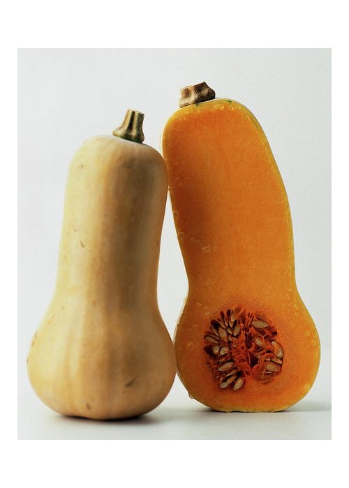 Fruits Greeting Card featuring the photograph A Butternut Squash by Romulo Yanes