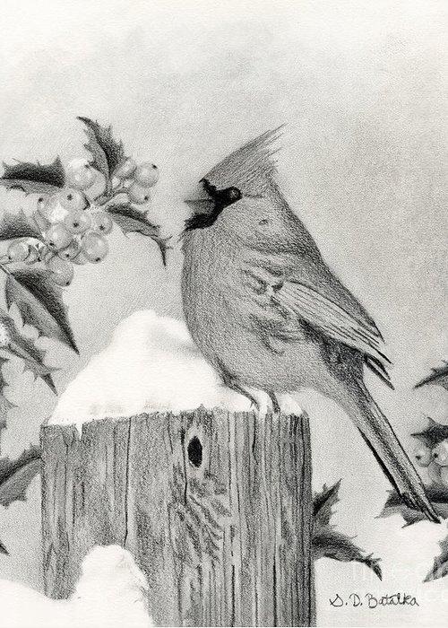 Bird On Tree Drawings Greeting Cards