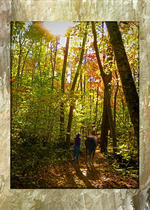 Fall Greeting Card featuring the photograph A Fall Walk With My Best Friend by Sandi OReilly