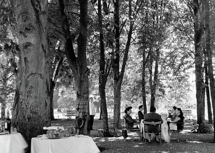 Food Greeting Card featuring the photograph A Group Of People Eating Lunch Under Trees by Luis Lemus