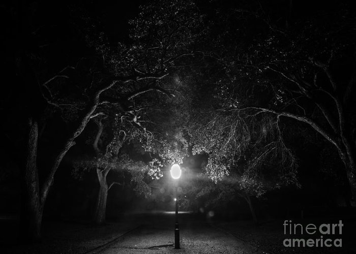 A Foggy Night In Downtown Charleston Sc Greeting Card featuring the photograph A Light In The Darkness by Sam Hymas