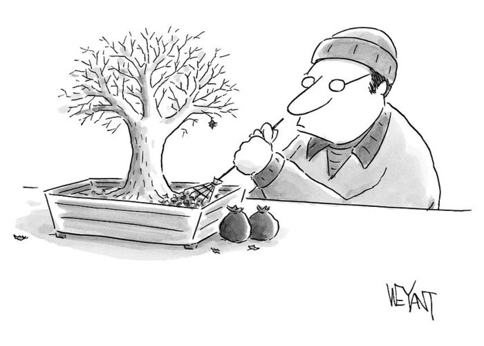Captionless Greeting Card featuring the drawing A Man Rakes Leaves In A Tiny Bonsai Tree by Christopher Weyant