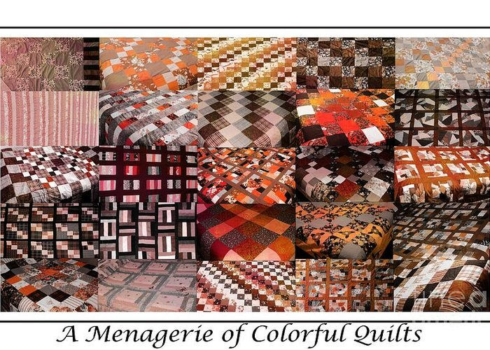 A Menagerie Of Colorful Quilts Autumn Colors Quilter Greeting Card featuring the tapestry - textile A Menagerie Of Colorful Quilts - Autumn Colors - Quilter by Barbara Griffin