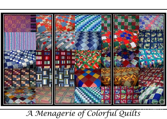 Quilts Greeting Card featuring the digital art A Menagerie Of Colorful Quilts Triptych by Barbara Griffin
