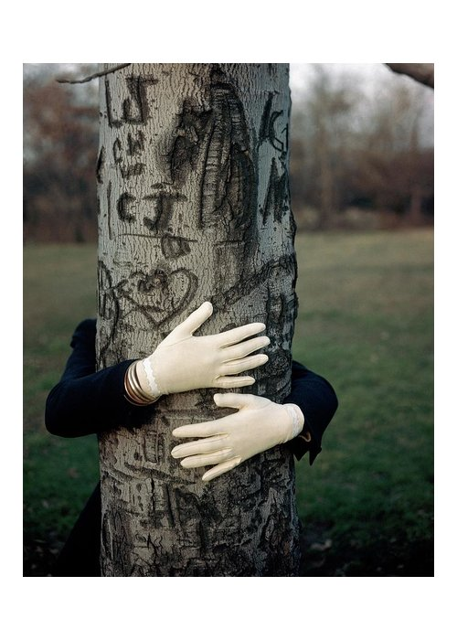 Fashion Greeting Card featuring the photograph A Model Hugging A Tree by Frances Mclaughlin-Gill