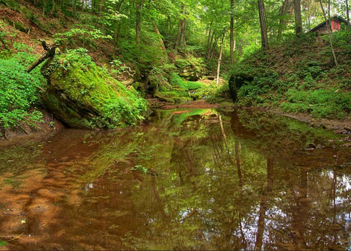 Durward's Glen Greeting Card featuring the photograph A Peaceful Glen by Leda Robertson