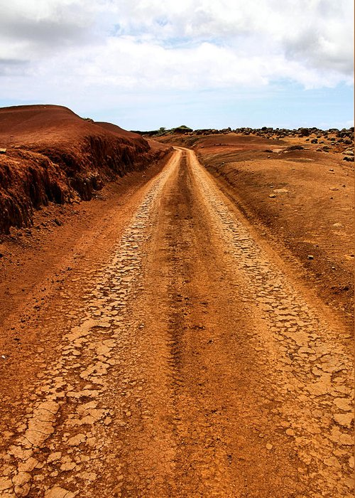 Lanai Greeting Card featuring the photograph A Road Less Traveled by DJ Florek