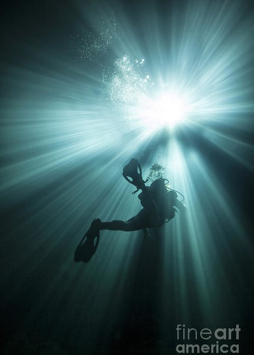 Scuba Diving Greeting Card featuring the photograph A Scuba Diver Ascends Into The Light by Michael Wood