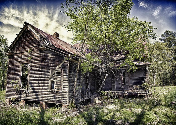 Old House Greeting Card featuring the photograph A Tree Grows Within by Chris Brehmer Photography