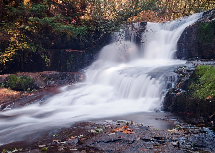 Waterfall Greeting Card featuring the photograph A Walk In The Woods by Margaret Pitcher