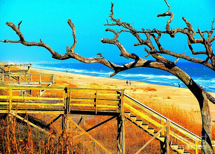 Carbo Greeting Card featuring the photograph A Walk On Atlantic Beach by Mj Carbo