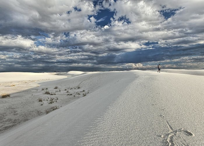 White Sands Greeting Card featuring the photograph A Walk On The Dunes by Diana Powell