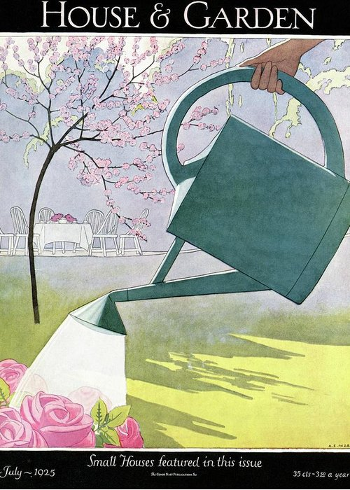 House And Garden Greeting Card featuring the photograph A Watering Can Above Pink Roses by Andre E Marty