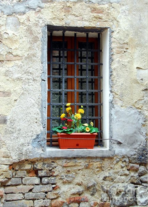 A Window In Tuscany Greeting Card featuring the photograph A Window In Tuscany by Mel Steinhauer