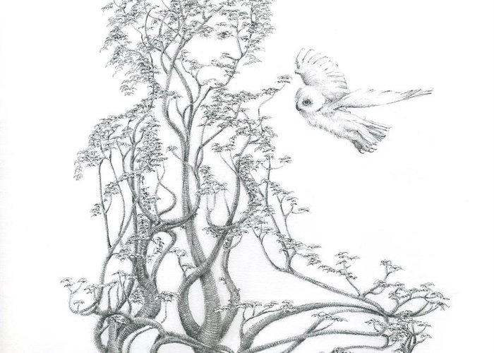 Tree Dancer Greeting Card featuring the drawing A Word To The Wise by Mark Johnson